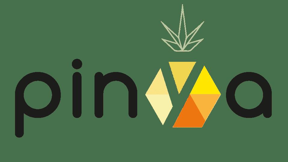 logo pinya 2